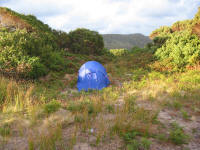Campsite at Pieman Heads