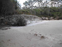 Beach erosion at Ketchem Bay