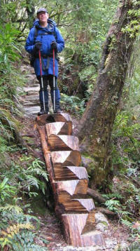 Log steps - making life easier